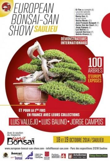 saulieu 2014 - european bonsai san show