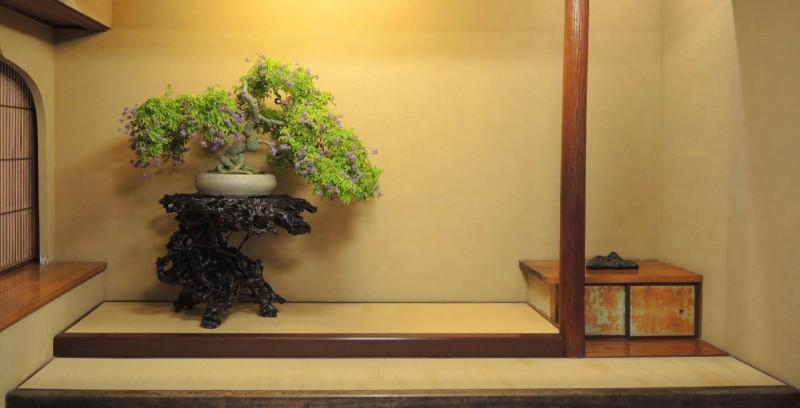 tokonoma avec bonsai en fleur à shunkaen