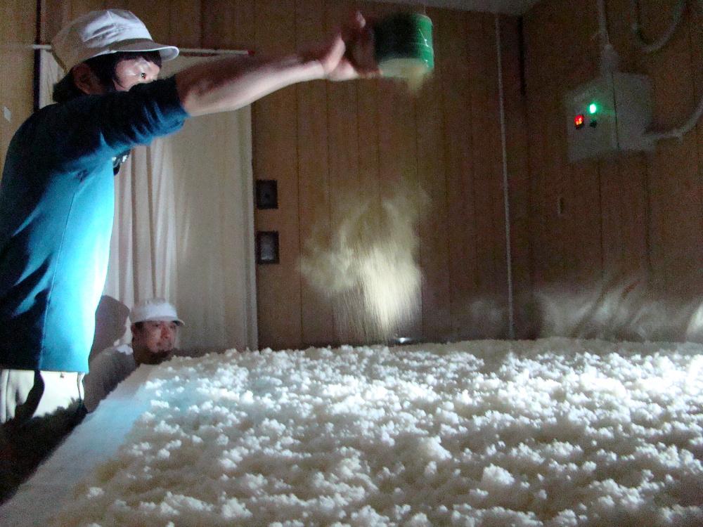 kojimuro, inoculation du riz avec les spores de moisissures