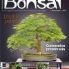 esprit bonsai 71 - article alexandre escudero