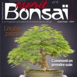 magazine Esprit Bonsaï 71 – août septembre 2014