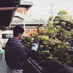 koukaen bonsai garden - 09