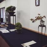 exposition de shohin a syoukaen