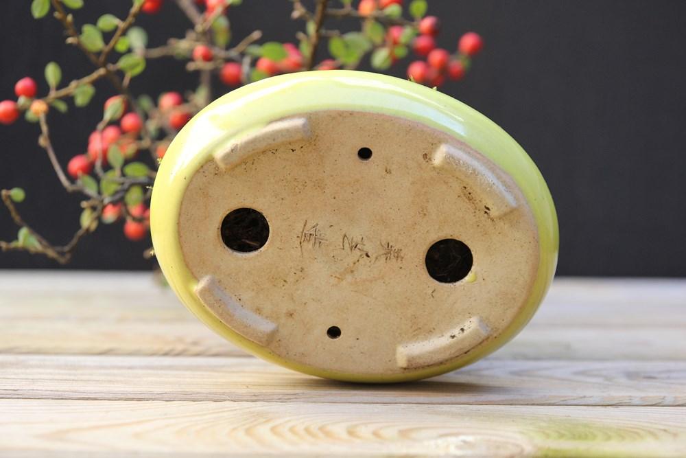 http://actubonsai.com/wp-content/uploads/2015/02/cotoneaster-shohin-à-vendre-signature-du-pot-japonais.jpg