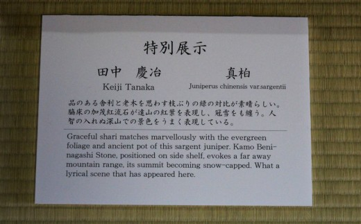 plaque explicative takamatsu bonsai convention