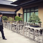omiya-bonsai-museum-10