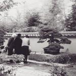 omiya-bonsai-museum-20