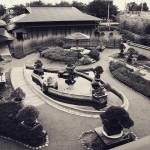 omiya-bonsai-museum-32