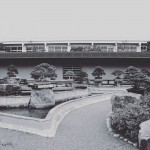 omiya-bonsai-museum-33