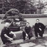 omiya-bonsai-museum-37