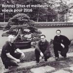 Le bonsaï en France en 2016